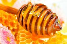 Festa del Miele