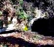 Catacomba di Campagnano