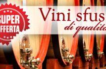 offerta vini sfusi di qualita