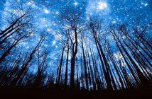 Cammino Astronomico al Parco di Veio